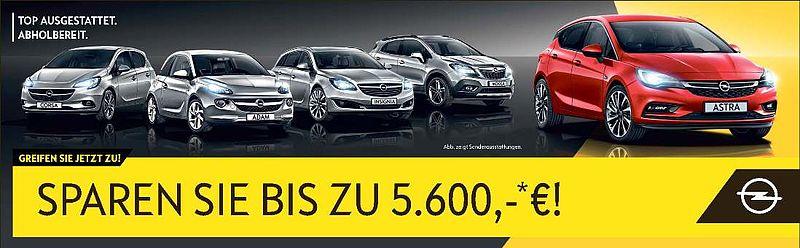 Opel Tageszulassungen