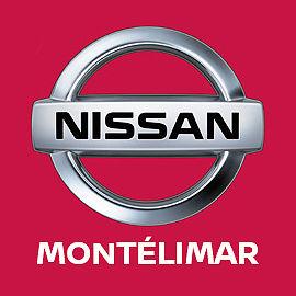Logo NISSAN concessionnaire Nissan Groupe Jean Automobiles Du Levant
